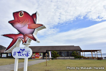 Right across the street from the dive shop is a popular seafood restaurant Daibo