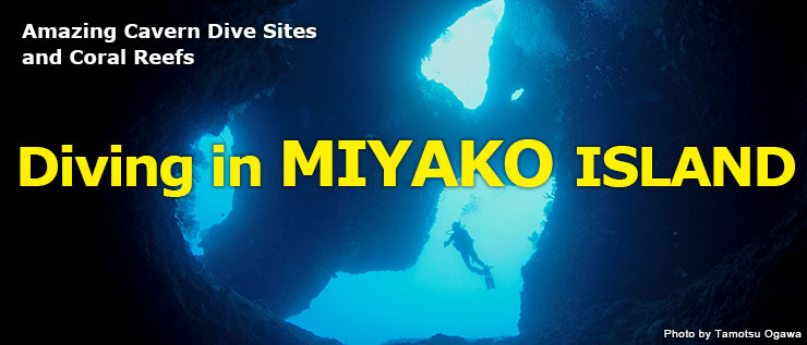 Amazing Cavern Dive Sites and Coral Reefs