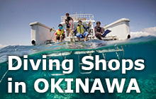 Diving Shops in OKINAWA