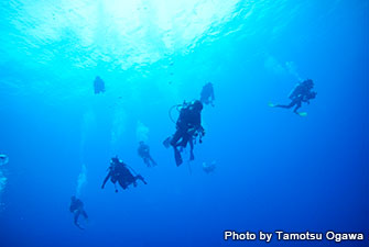 Yonaguni Island is perfect for blue water diving with the high visibility