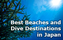 Best Beaches and Dive Destinations in Japan