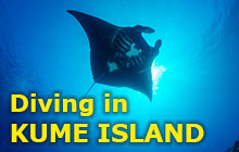Diving in Kume Island